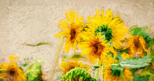 Image of some yellow daisies painted with Topaz Impressions plug-in