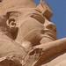 Egypt & Jordan 2010