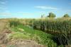 Tres Rios Marsh