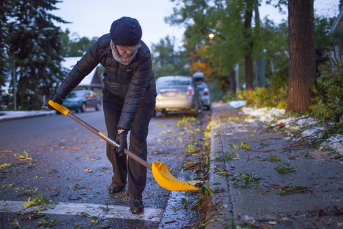 September 2014 Snow Event and Tree clean-up