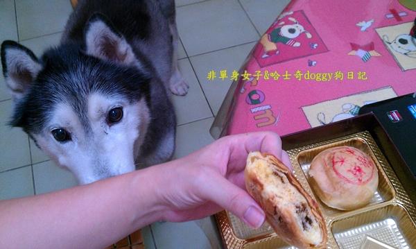 玉兔月餅柚子11
