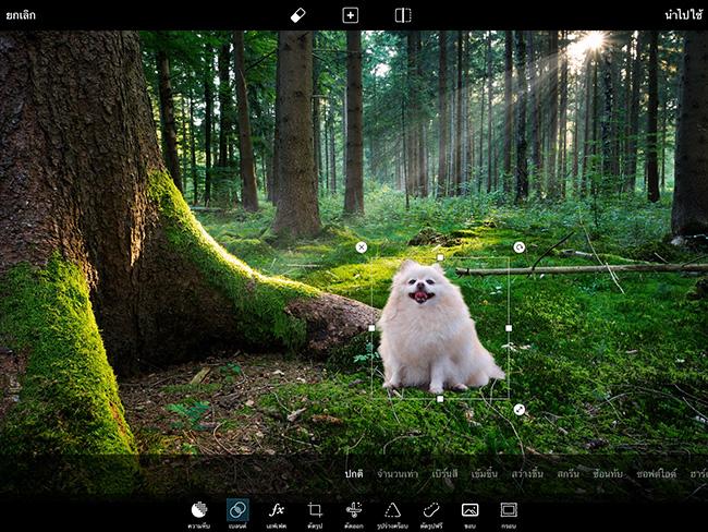 PicsArt Cut image