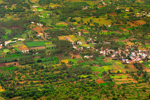 Landscape From Yelagiri Hill Top