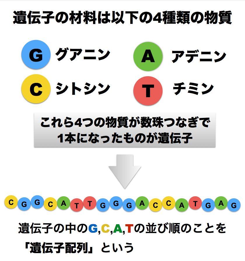 DNAと遺伝子配列