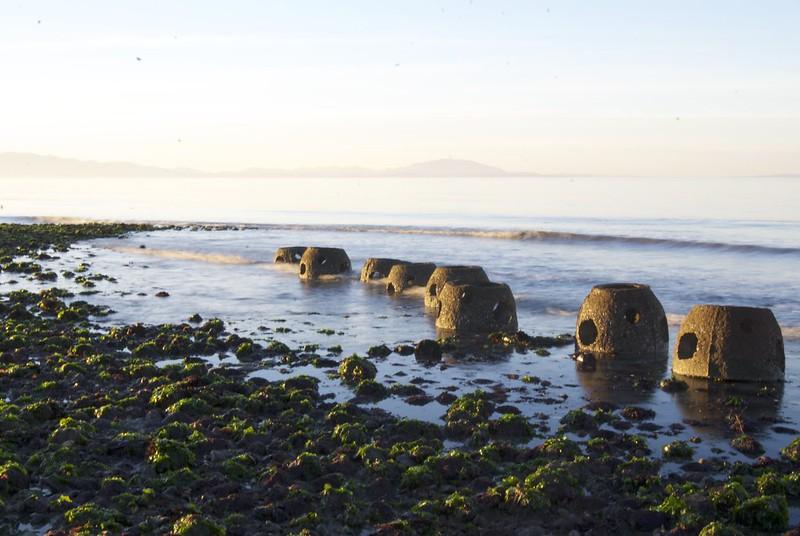 Point Pinole reef