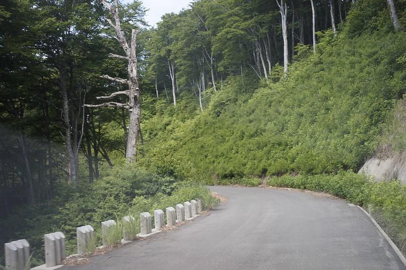 Forest road Shirakitouge Line