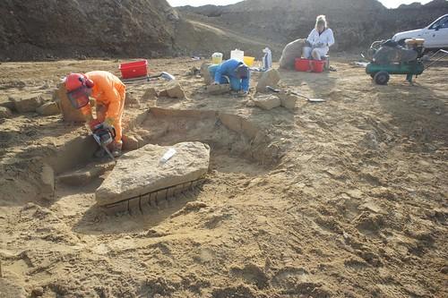 挖掘鯨魚化石。橘色衣服為Ewan(作者的指導教授),藍色衣服為Yoshi(實驗室另一名博士生),白色衣服為Sophie(實驗室清修化石的技師)。作者攝於紐西蘭南島。