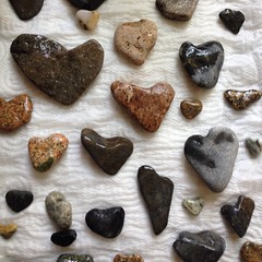 #beachrocks #heartshapedrocks #maine nice morning! Can't tell you where, but I'll name it beach rocks beach from today's find!!
