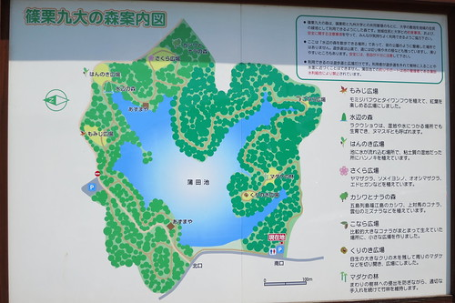 Kyushu University Forest