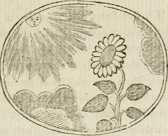 "Image from page 50 of ""Choice emblems : natural, historical, fabulous, moral and divine, for the improvement and pastime of youth : ornamented with near fifty handsome allegorical engravings, designed on purpose for this work : with pleasing and familiar"
