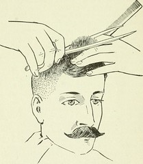 "Image from page 65 of ""The manual on barbering, hairdressing, manicuring, facial massage, electrolysis and chiropody as taught in the Moler system of colleges"" (1906)"