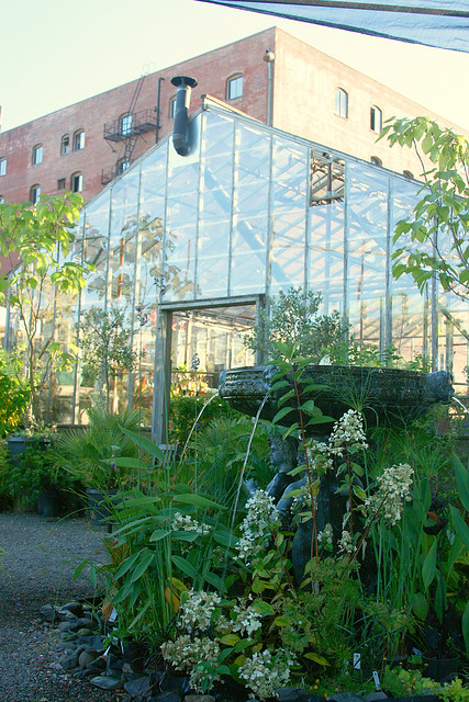 6_fountain_and_greenhouse