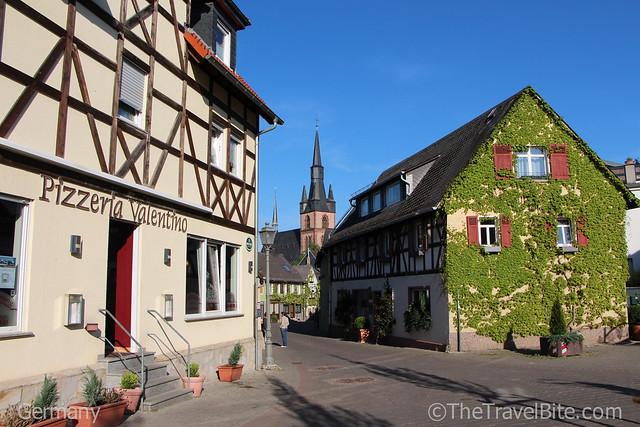 Rheingau Wine Region Germany-86