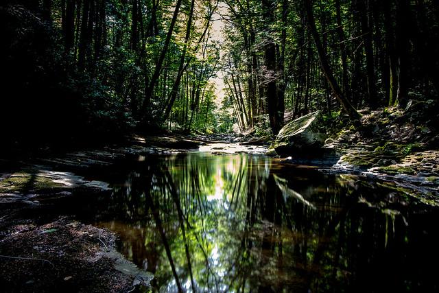 hiking Dingmans Creek Area