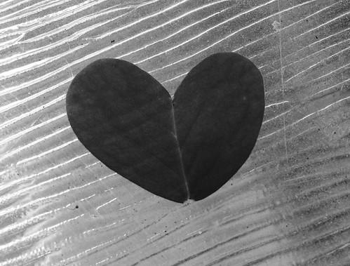 heartl
