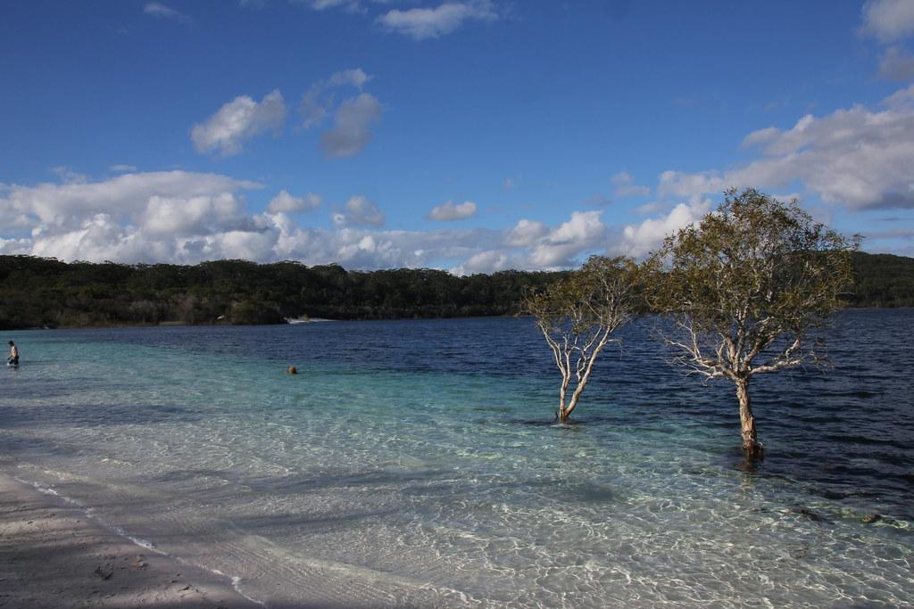 lake mackenzie, fraser island