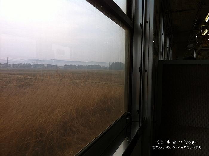 2014田代島1.jpg