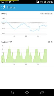 20140915_RunKeeper(Running)charts