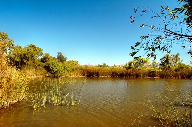 San Joaquin Pond