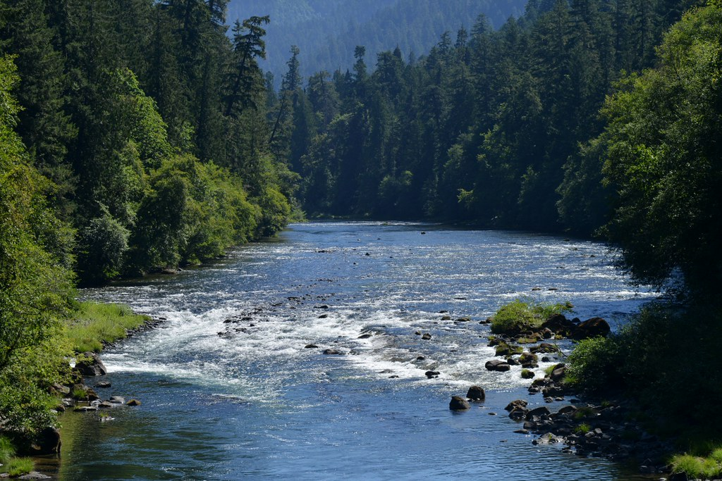 Looking up the North Umpqua River in Oregon from the new Tioga footbridge near Susan Creek