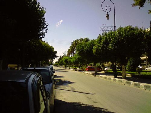 sunny clear idlib