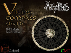 Viking compass shield (1)