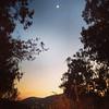 A lua #nascerdosol #sunrise #serranegra #saopaulo