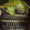The growing creativity of a writer.  #kansasstatefair #plants #botanical #typewriterpoetry #typewriter