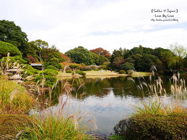日本東京自由行新宿御苑庭園景點 (22)