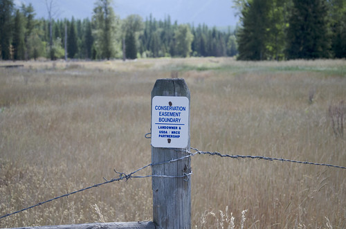 The Conservation Easement boundary on the Nelson ranch.