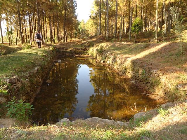 River (Gad Ganga) and Ecology Revive in Ufaraikhal, Bironkhal, Pauri-Garhwal, UK, India