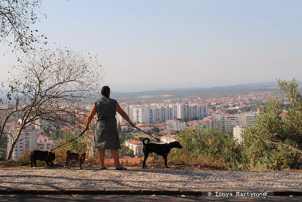 23 - Castelo Branco Portugal - Каштелу Бранку Португалия