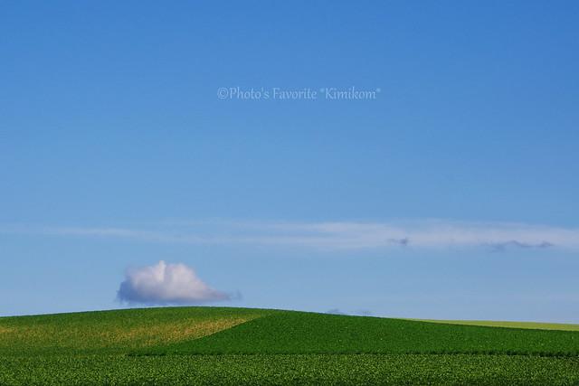 晴ときどき曇2