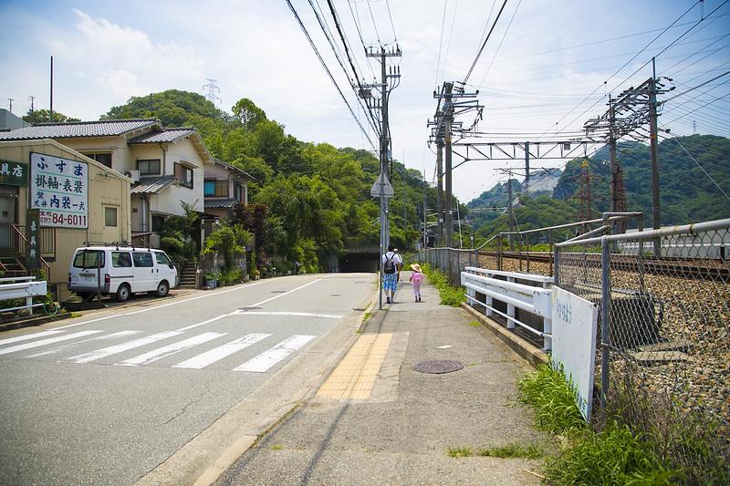 武庫川渓谷廃線ハイキング(生瀬ー武田尾)489