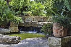 The Genisis Pool