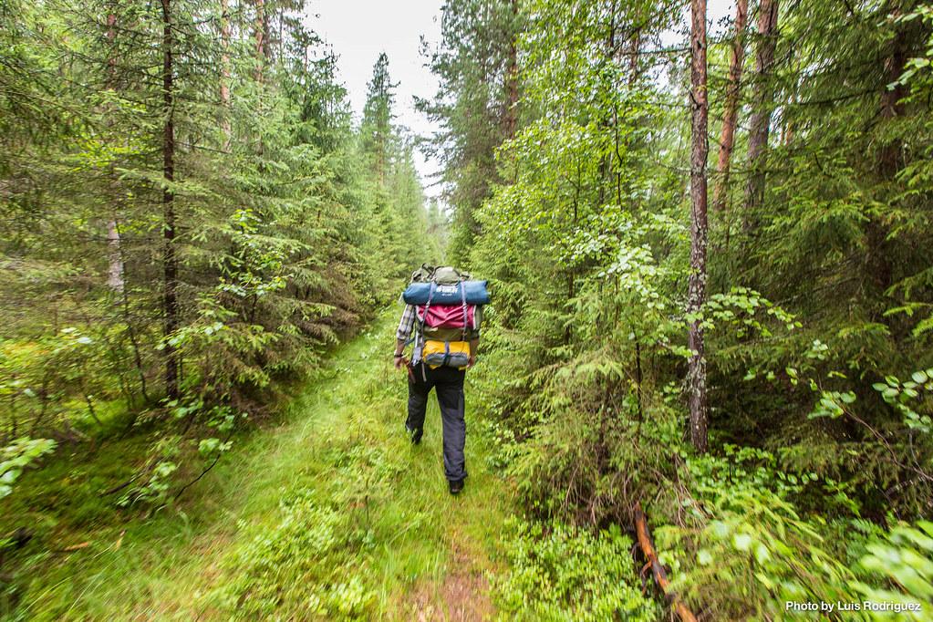 4 días en Laponia sueca-34