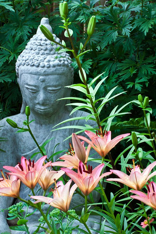 Pink Lilies And Garden Statue