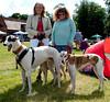 140525 Greyhound Extravaganza-0128