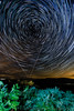 Star trails over Llangynidr Moors.  45 minutes of motion looking towards the pole star