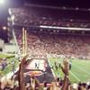 It's blurry but it's a TD!!!! #GoCards #L1C4 #BEATmiami