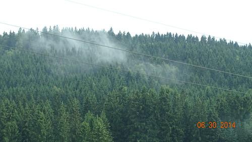 5145 -Zwettl an der Rodl, Upper Austria
