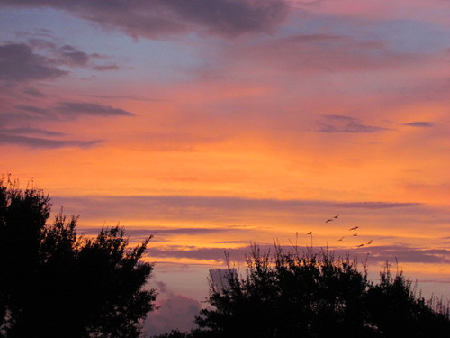 pink blue sky orange nature beauty clouds sunrise texas purple riverbend
