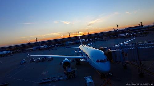 Tokyo Arrival 8