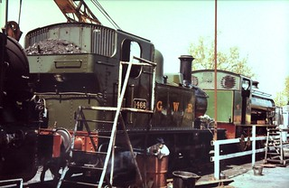 84-254  1980s visting locos to the K&ESR - two of three;  ex-GWR 14XX 0-4-2T No 1466 at Rolvenden