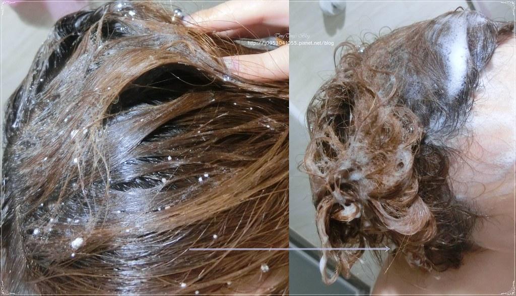 Fresh Line 洗髮餅 (6)
