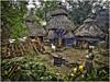 Konso Village Barnyard