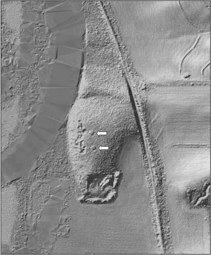 Light Detection and Ranging LiDAR image shows the archaeological mounds in this restored wetland in Illinois. NRCS photo.