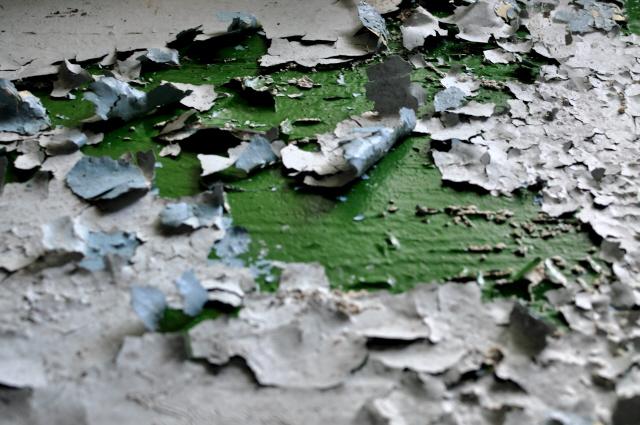 Beelitz_Heilstätten_2014_129
