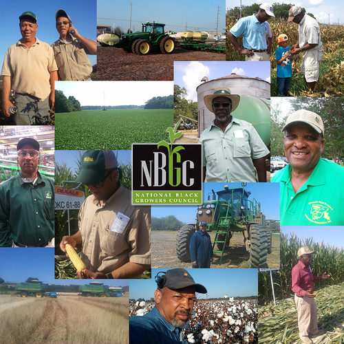 At AMS, we are committed to ensuring that all research and promotion boards are as diverse as the members they serve. Photo courtesy of National Black Growers Council.