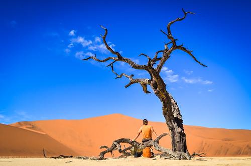 Dead tree trunk, Dead Vlei, Namibia